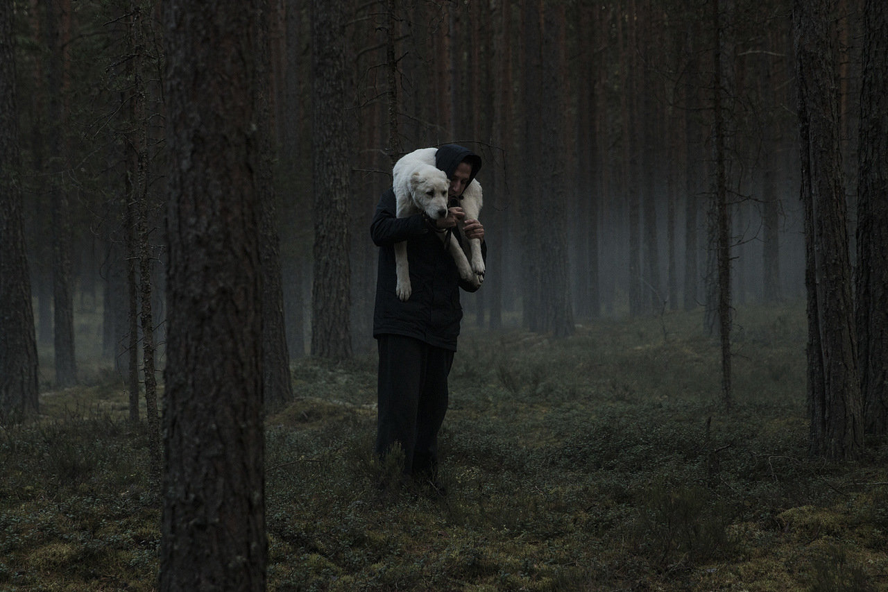 Фильм «Сердце мира» попал в конкурс фестиваля в Сан-Себастьяне