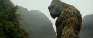Конг: Эволюция образа