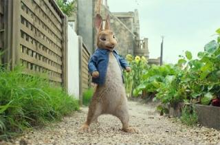 Начата разработки сиквела «Кролика Питера»