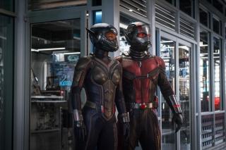 «Человек-муравей и Оса»: вторжение насекомых