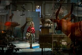 Первый кадр с Кристен Уиг из сиквела «Чудо-женщины»
